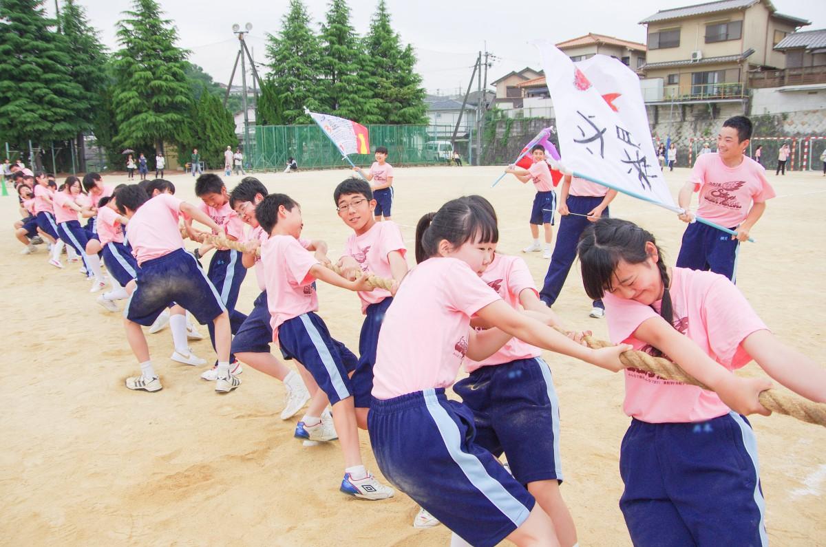園 清 高校 教学